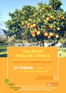Event cartell curs podacitrics