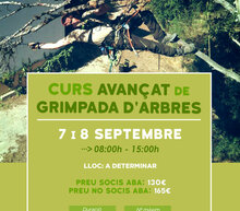 Event grid curs avanc%cc%a7at grimpada