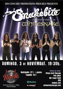Event cartel snakebyte vitoria 700x985